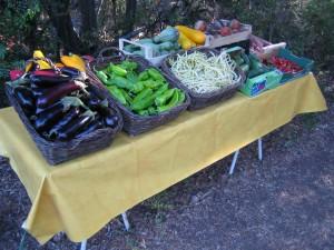 Presentation Légumes